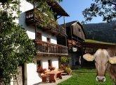 Bauernhofurlaub in Rodeneck/ Südtirol